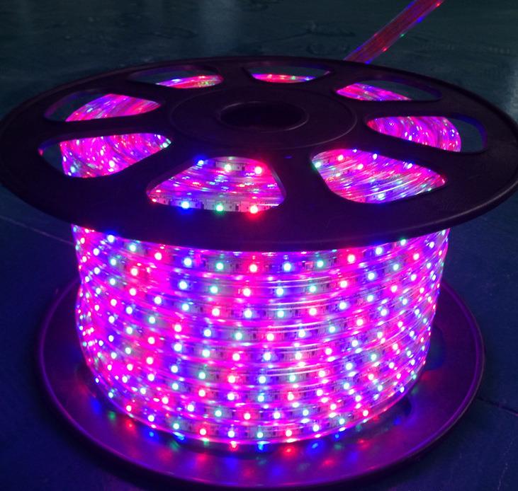 Flexible SMD5050 72 LEDs/M DC220V RGB LED Strip Light