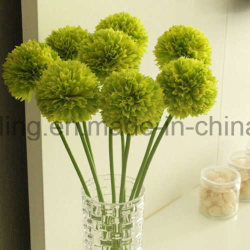 Single Pop Mum Flower for Home Decoration (SW13301)