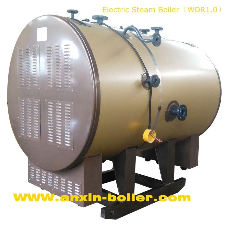 Electric Steam Boiler Manufacturer