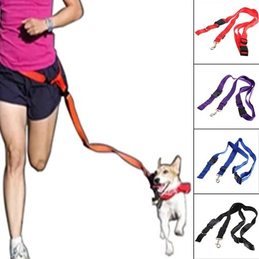 Nylon Running Pet Dog Leash Rope Training Slip Adjustable Traction Collar Rope Chain