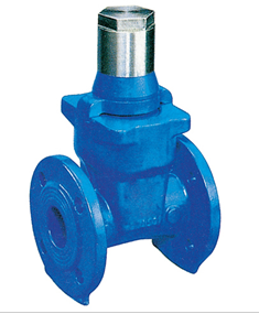 Resilient-Seated Gate Valve