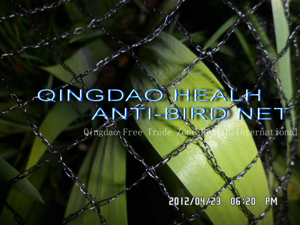 4mx100m 40X40mesh Anti-Insect Net