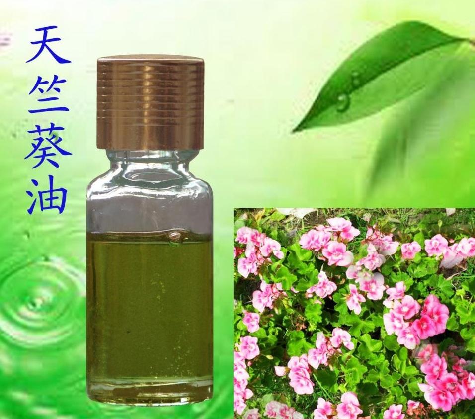 Pure Rose Geranium Essential Oil for Skin Care