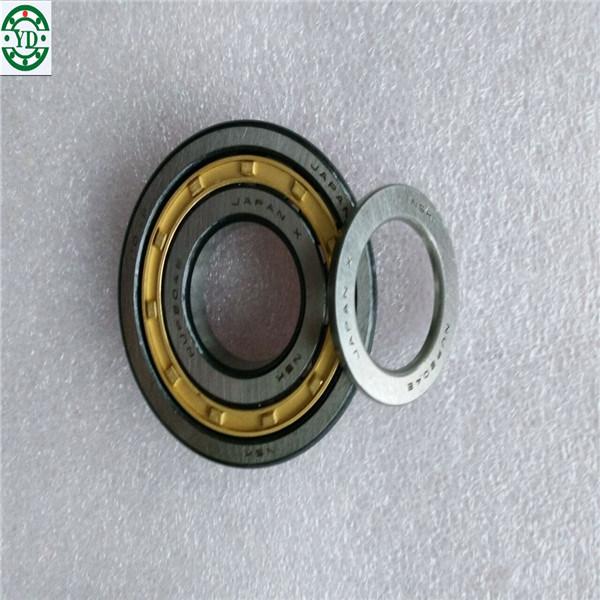 Nn Nj Nu Nup Cylindrical Roller Bearing NSK Nup304em
