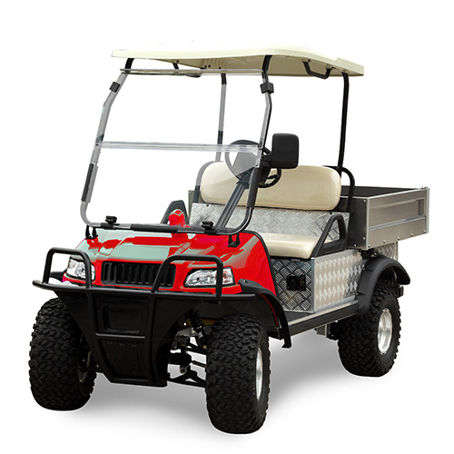 Electric Mini Van Automatic Lifting Cargo Truck