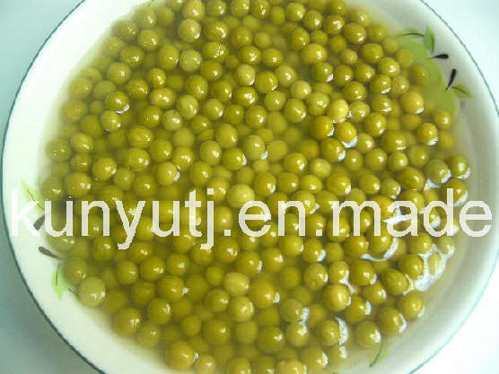 Green Peas in Tin with High Quality