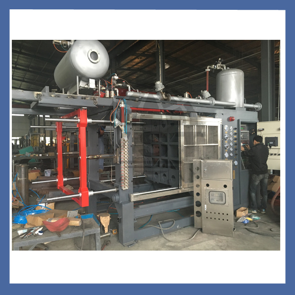 EPS Vegetable Fish Box Machine