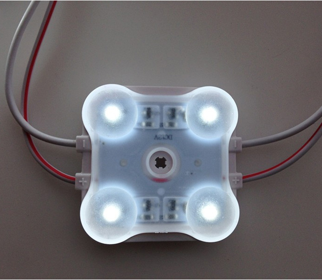 High Brightness 4LEDs 5050 LED Module IP65