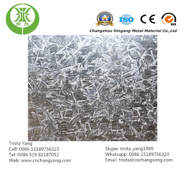 Hot Dipped Galvanized Steel Coil Z100 Regular Spangle