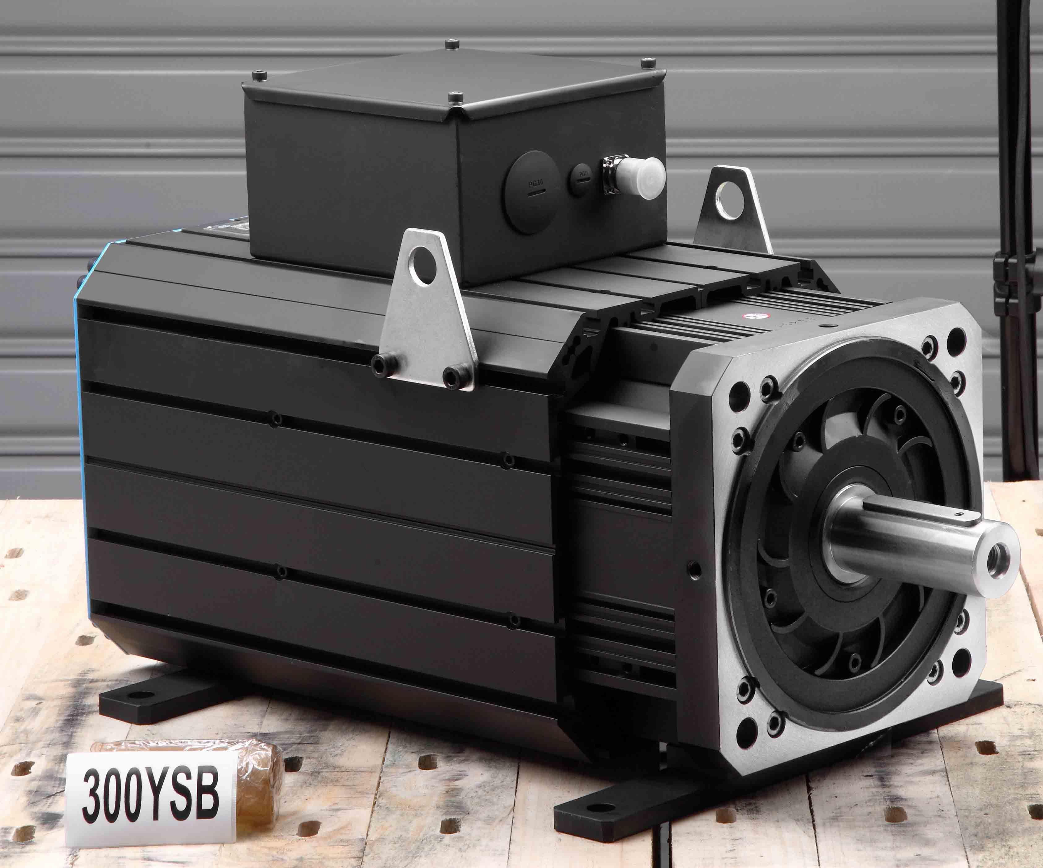 AC Permanent Magnet Servo Motor 300ysb20f 250nm 2000rpm