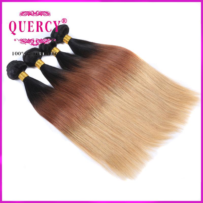 Omber Malaysian Virgin Hair Bundles Cheap Malaysian Human Hair Three Tone Hair Extension