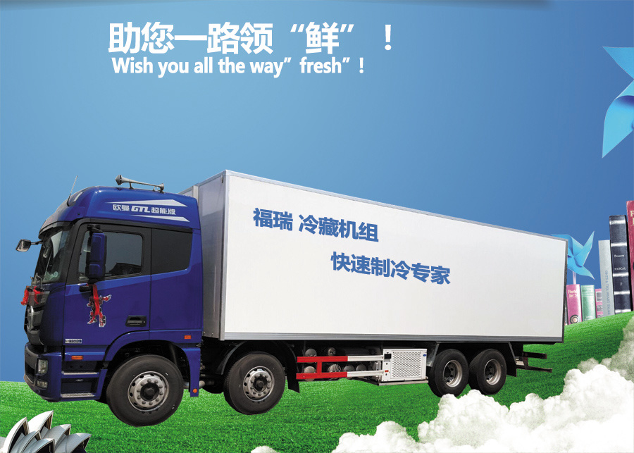 Used Refrigeration Units for Trucks, Food Refrigerator Van Truck for Sale