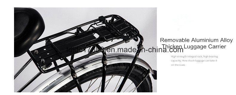 Fat Tire Bicycle/Hl 141 Mechanical 26*17′′ Bike/Travel Bike
