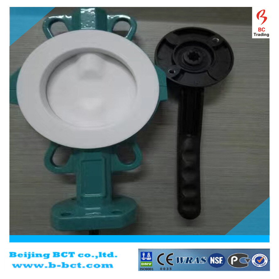 Casting Body PTFE Lining Wafer Butterfly Valve with Full PTFE Bct-F4bfv-11