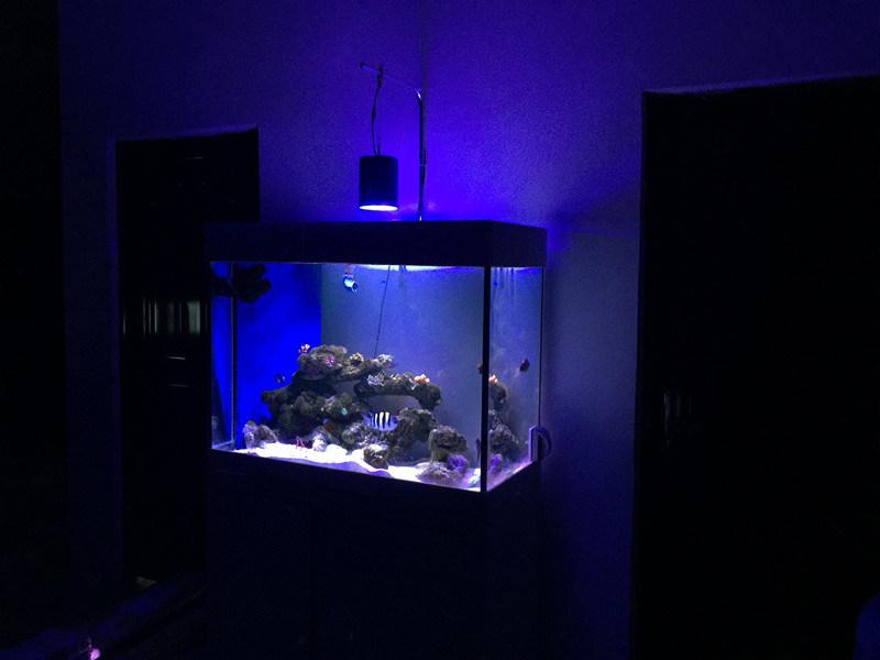 Adjustable 90W Coral Reef Use LED Aquarium Lighting