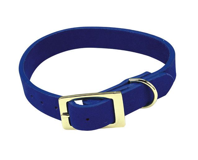 Life On Bellair Dog Collars