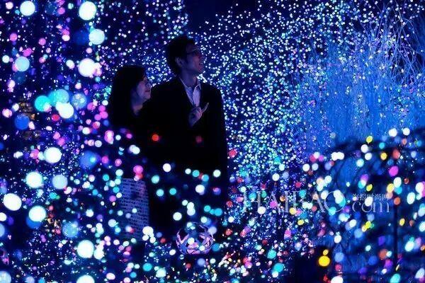 Christmas Tree Decoration LED String Curtain Light