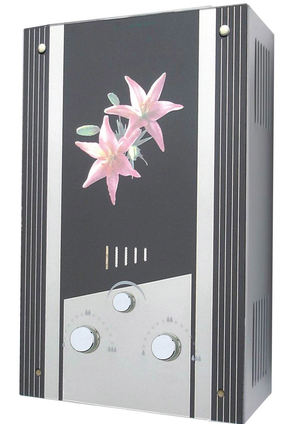 Elite Gas Water Heater with Summer/Winter Switch (S51)