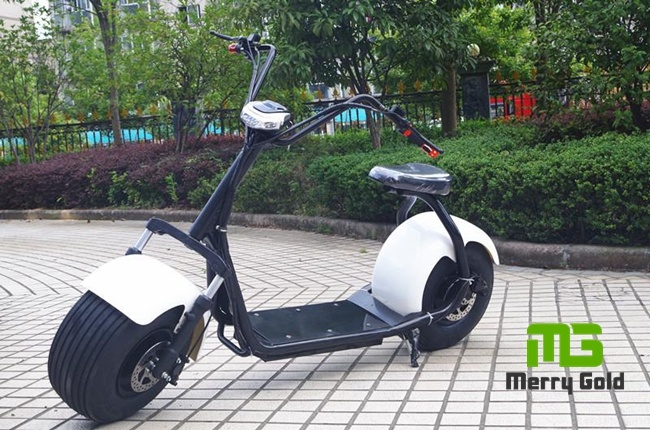 Hot Selling Fat Tire Citycoco 1000W Electric Scooter
