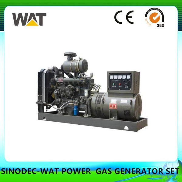 190 Series Natural Gas Generator Set Silent Generator