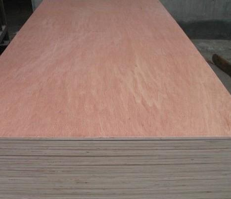 18mm High Quality Best Price Bintangor Plywood Lumber