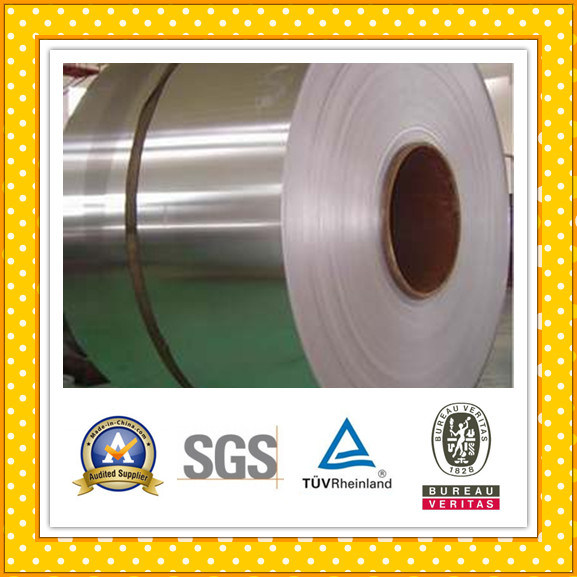 Stainless Steel Strip / Stainless Steel Coil