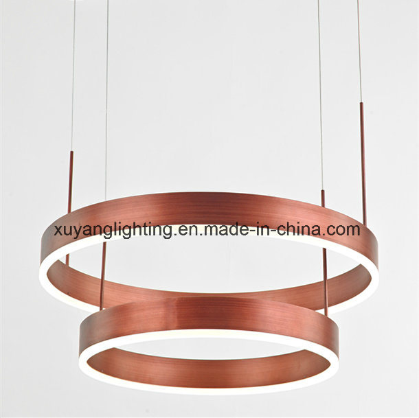 Modern Art Pendant Light with Double Layer