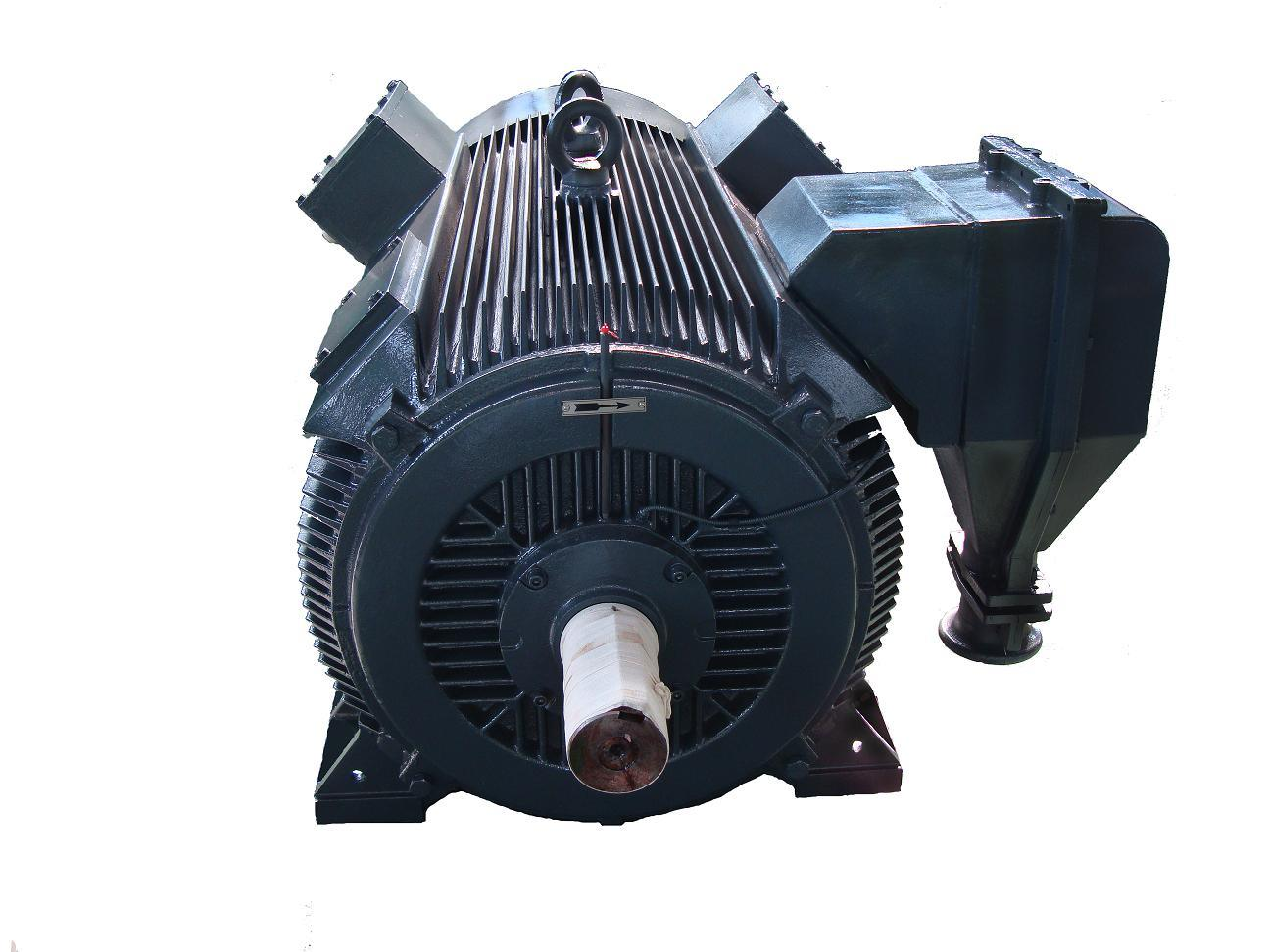 Ht Motor- Electric Motor-Totally Enclosed Cast Iron High Voltage Motor