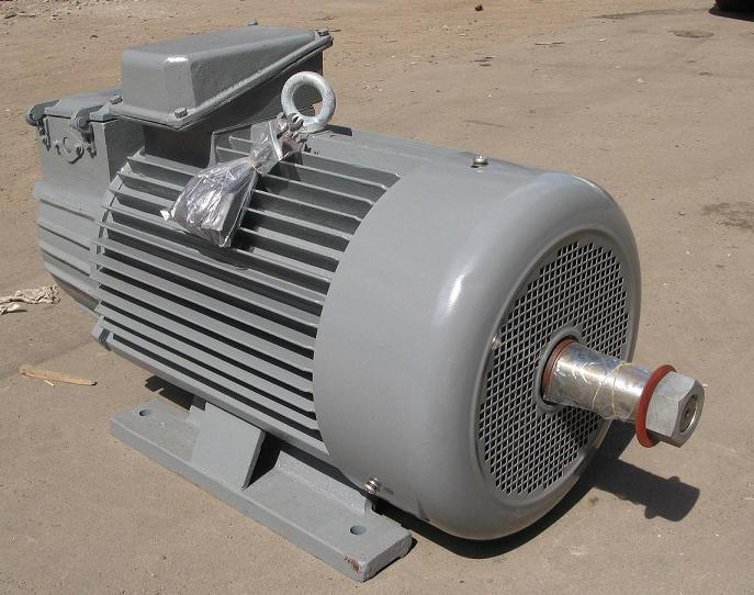 China Wound Rotor And Squirrel Cage Rotor Three Phase
