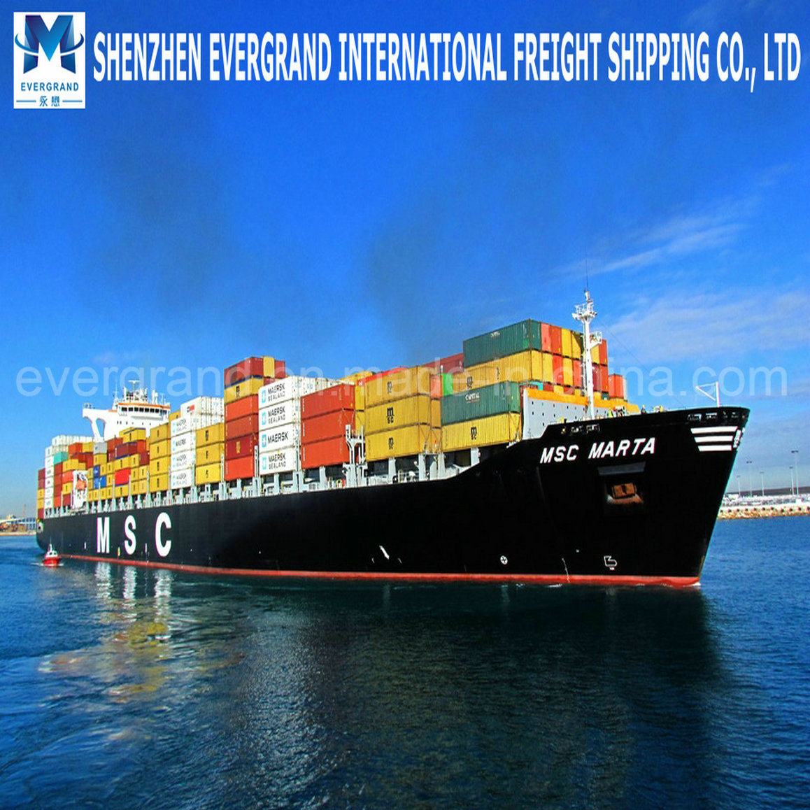 China Freight Shipping Agent to World