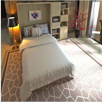 New Design Home Furniture Vertical Tilting Murphy Wall Bed