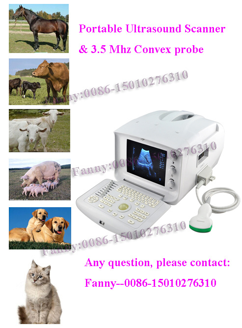 Veterinary Portable Ultrasound Scanner Vet Ultrasound Machine -Fanny