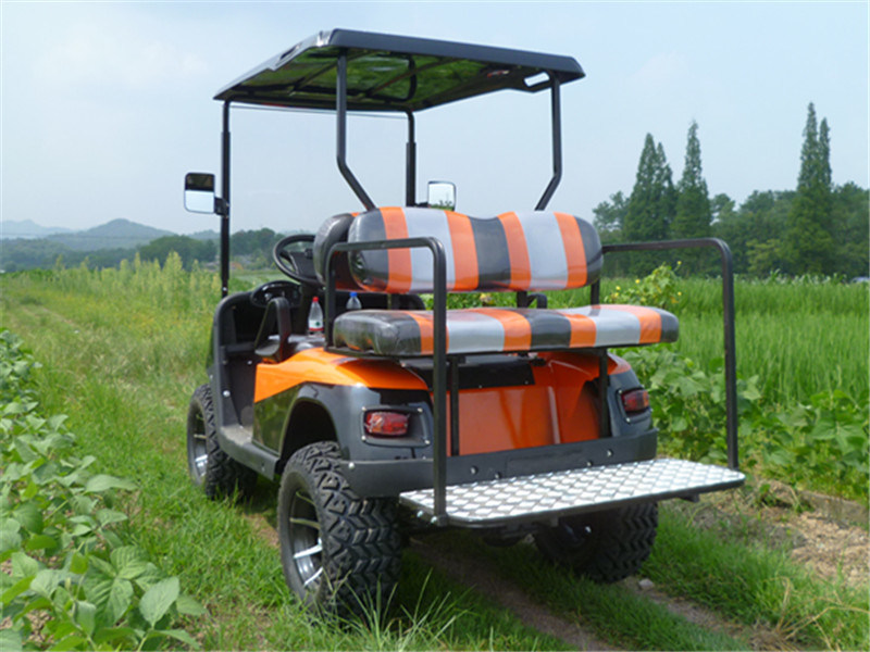 Gasoline Powered off Road Golf Buggy