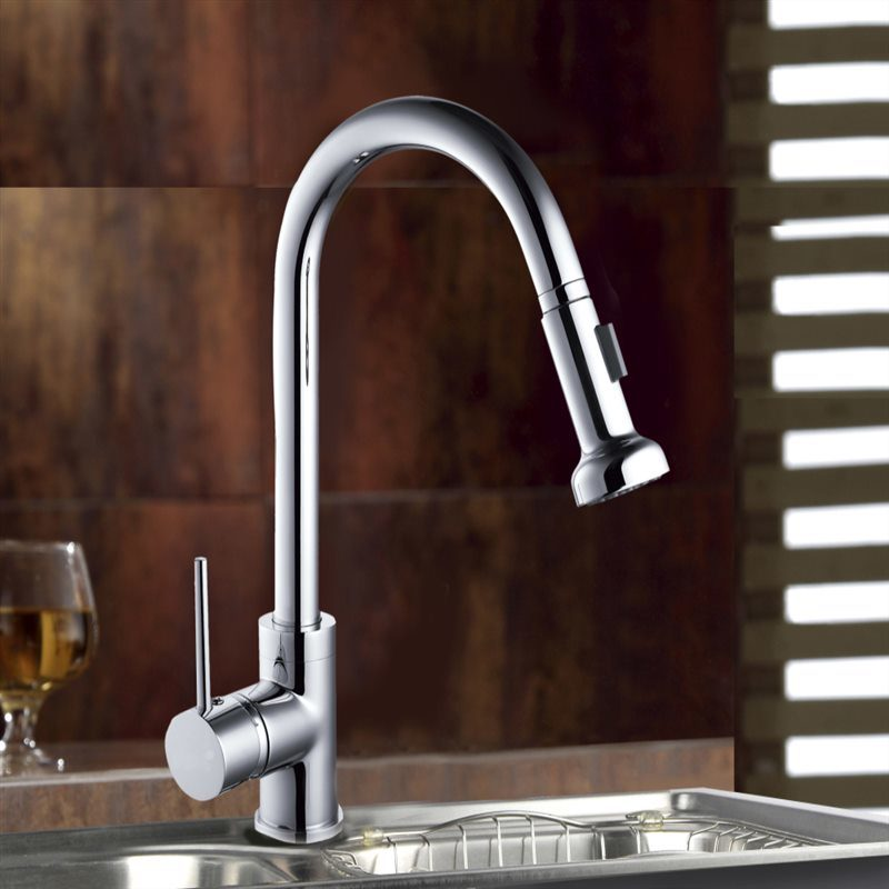 Single Handle Flexible Pull out Spray Brass Kitchen Faucets