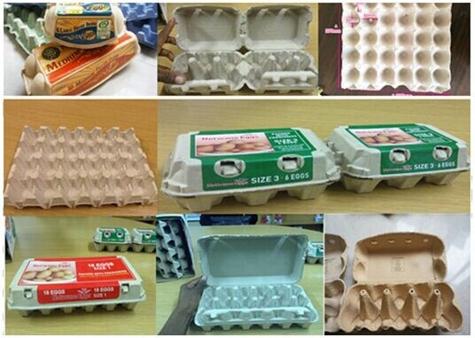 Paper Pulp Molding machine for Making Egg Tray with CE
