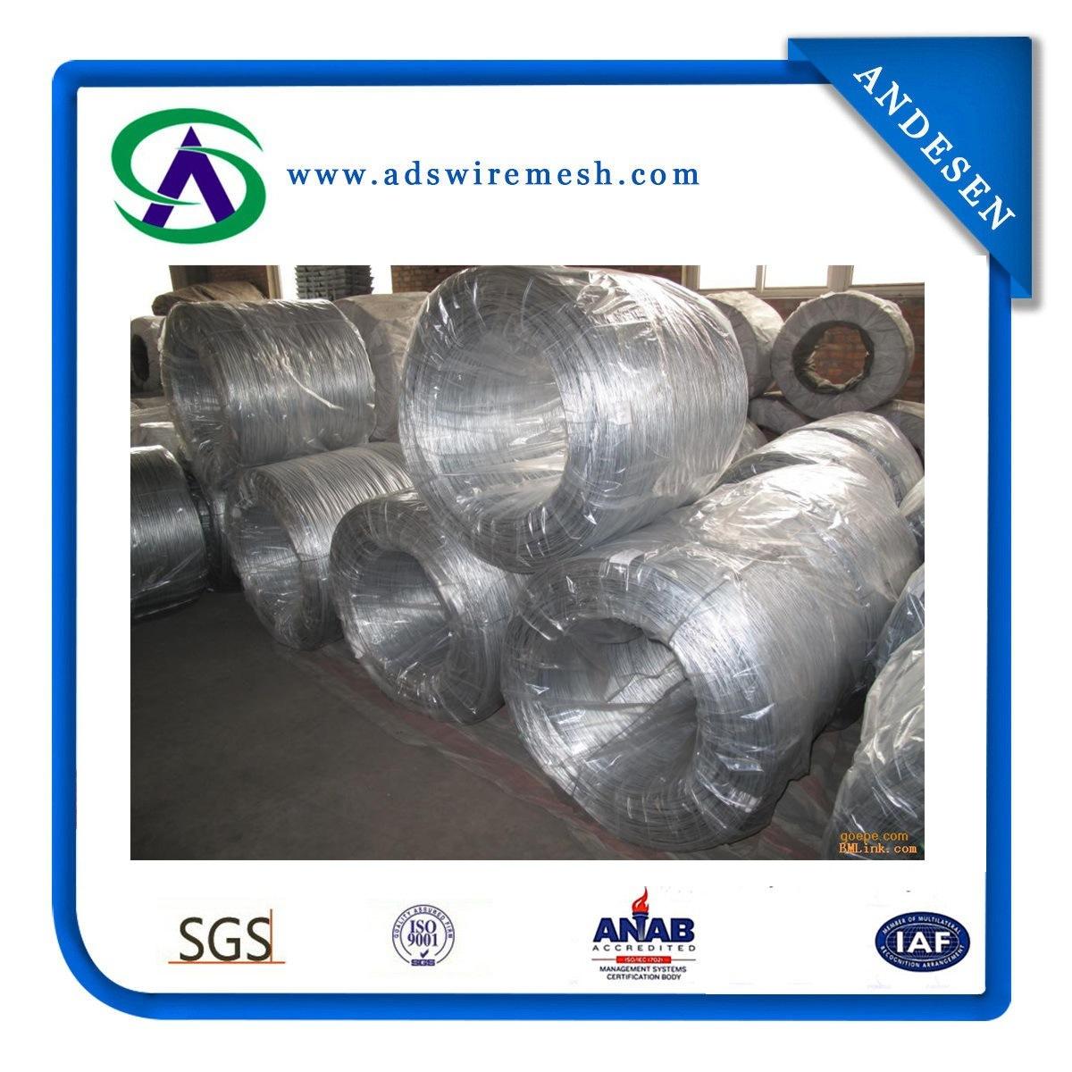 High Quality Galvanized Iron Wire (ADS-GW-01)