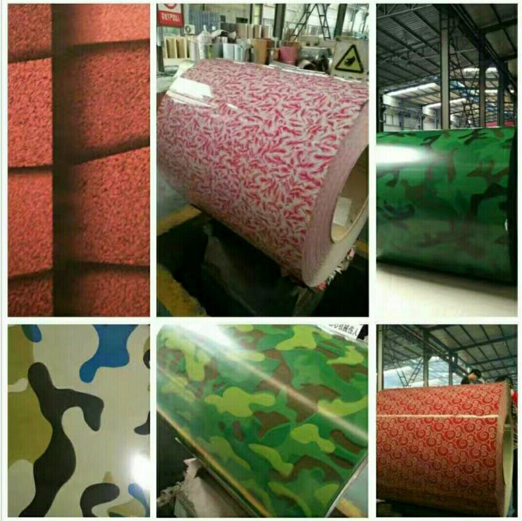 Prepainted Galvanized Steel Coils with Color Coating Top 12-20um, Back 5-7um