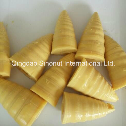 3000g Packing Canned Bamboo Shoots (HACCP ISO BRC)