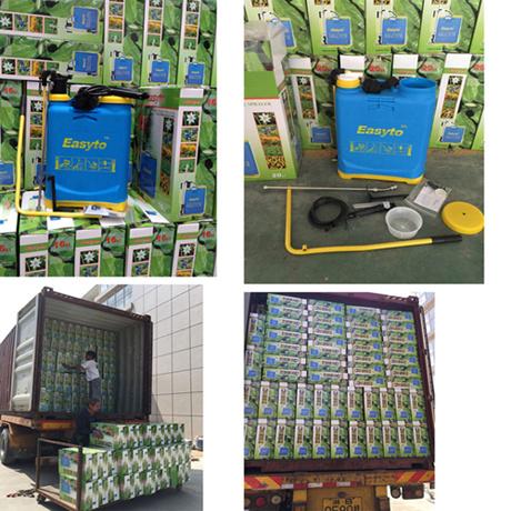 Knapsack Manual Hand Pressure Agricultural Sprayer (YS-20-1)