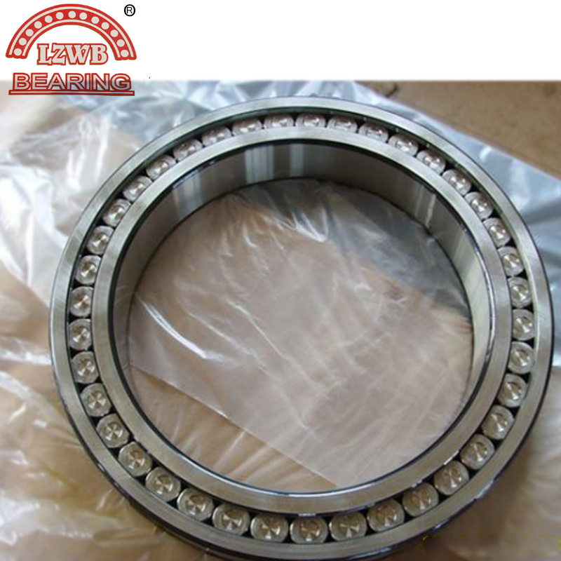 Multi Row Cylindrical Roller Bearing (NN3024)