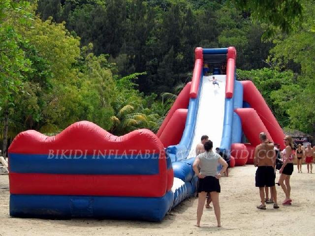 Inflatable Slide, Water Slide, Hippo Giant Slide (B4039)