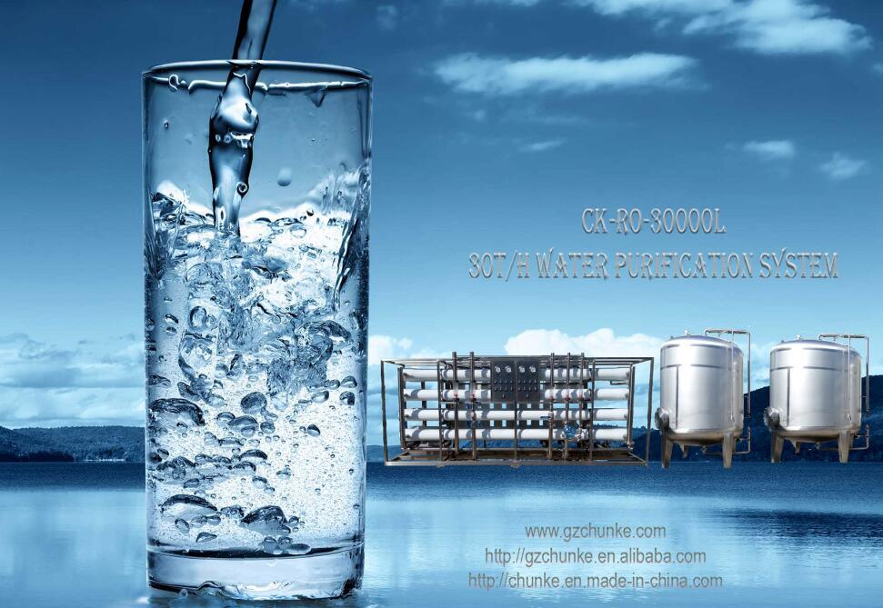30 Tph Industrial Automatic RO System Water Filter System