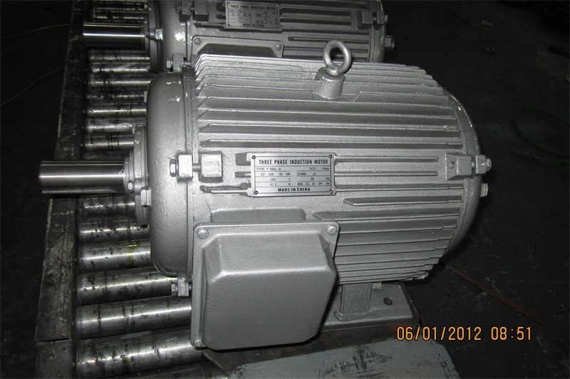 Y Series Three Phase Induction Electric Motor pictures & photos