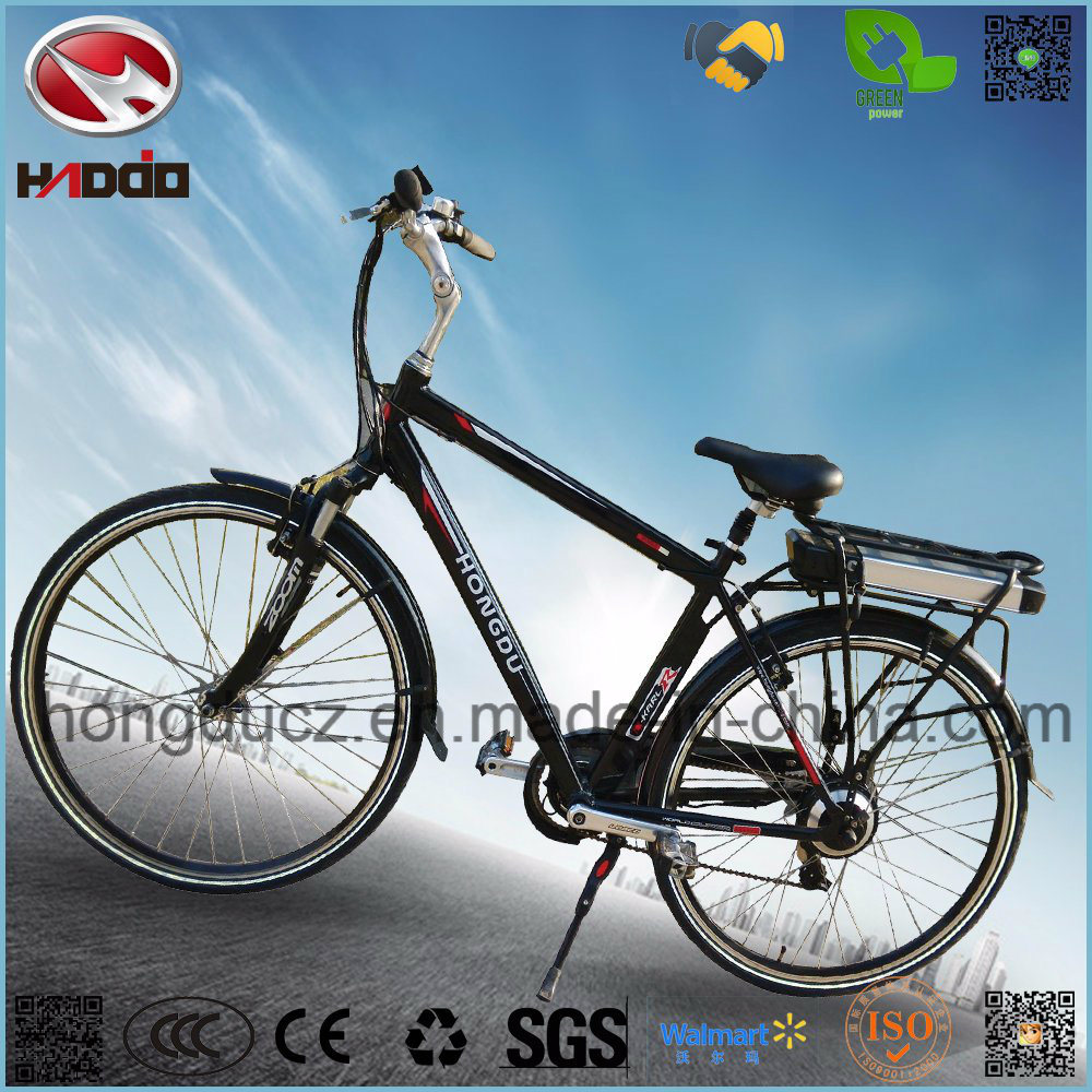 Electric Mountain Bike with Conversion Kit
