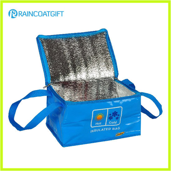 Customized Reusable Aluminum Foil Insulated Beer Cooler Bags RGB-032