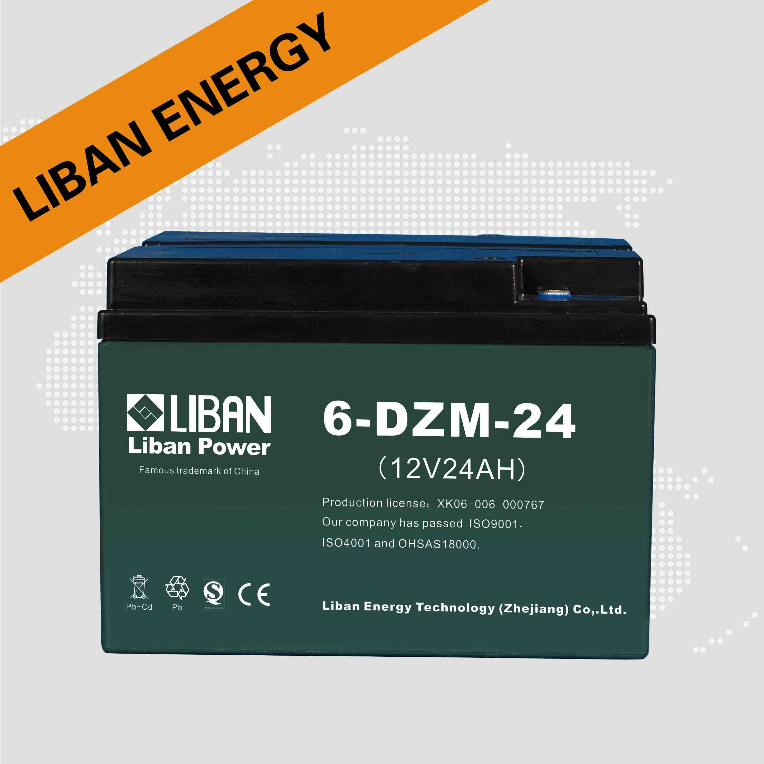 Lead Acid Battery (6-DZM-24)