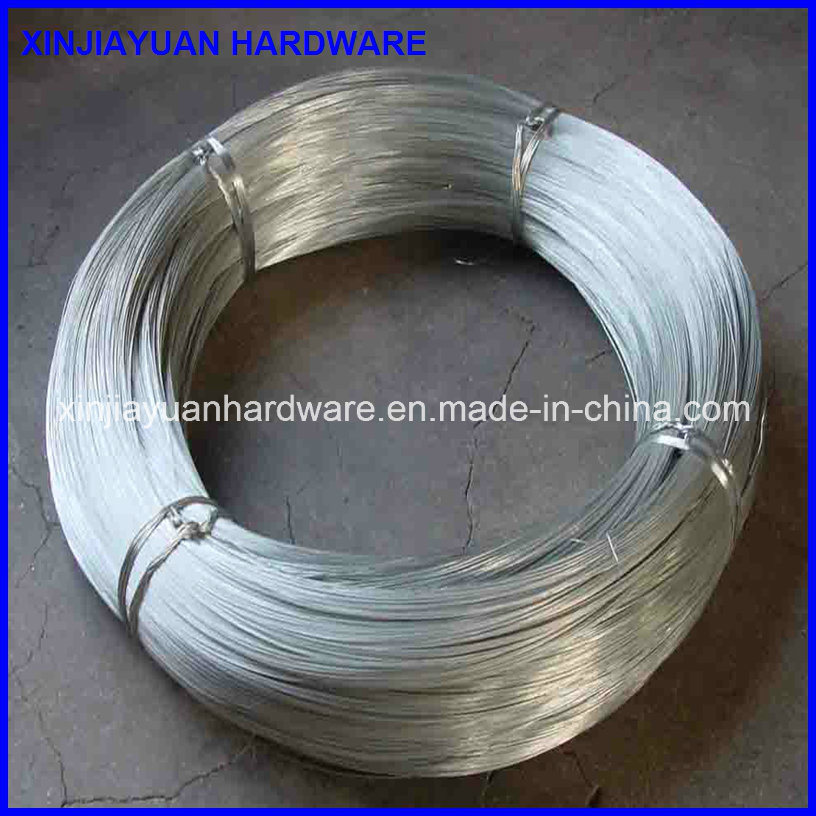Galvanized Wire /Iron Wire /Galvanized Iron Wire for Binding
