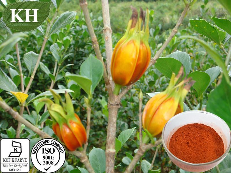 Kingherbs Liver Protection Gardenia Fruit Powder
