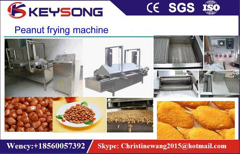 Continous Belt Food Frying Machine