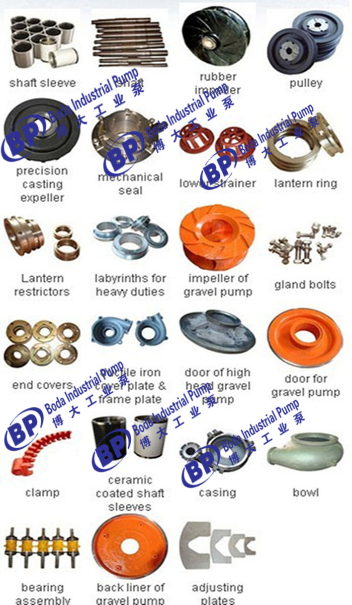 China Pump Factory (OEM)